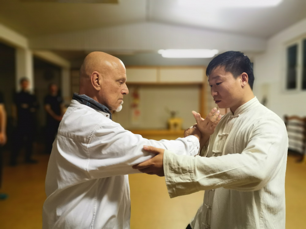 Meister Yang Jian Chao im Herbst 2019